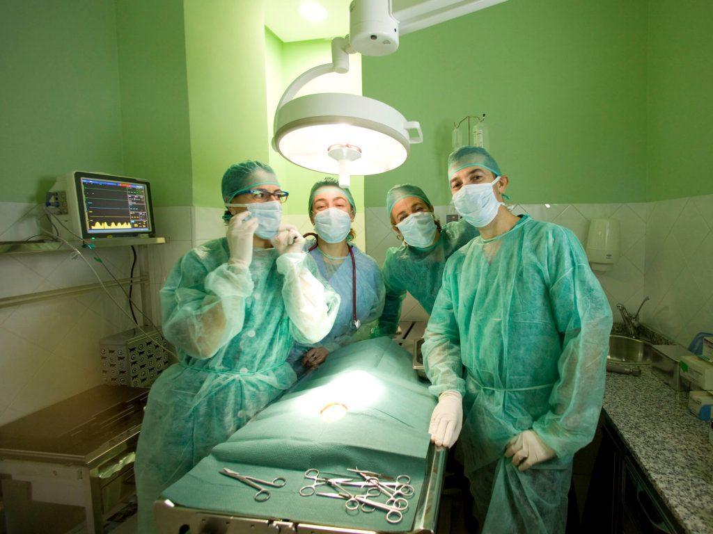 Instalaciones Clínica Veterinaria María J. Cabeza