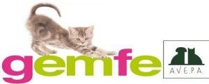 GEMFE veterinaria en Leon