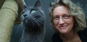 gatos-vuelta-de-vacaciones-clinica-veterinaria-María-J.-Cabeza
